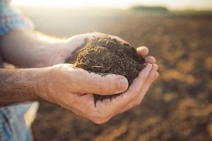 Grupa producentów rolnych – jak założyć?